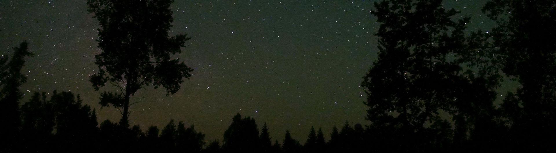 9_noapte_ww